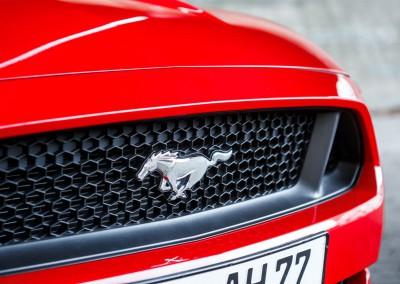 Ford Mustang Vorführwagen FordStore Hagemeier - Bilder von Keno Zache 09