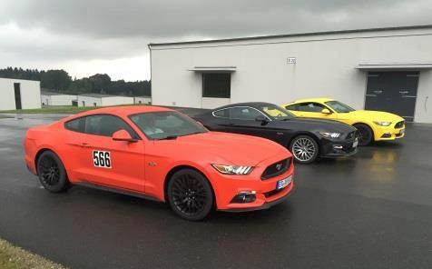 Ford Mustang am Bilster Berg