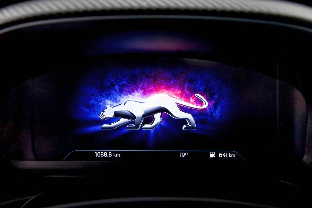 Ford Hagemeier Puma
